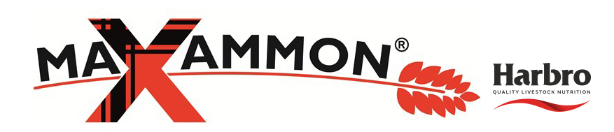 maxammon-logo-int-tm